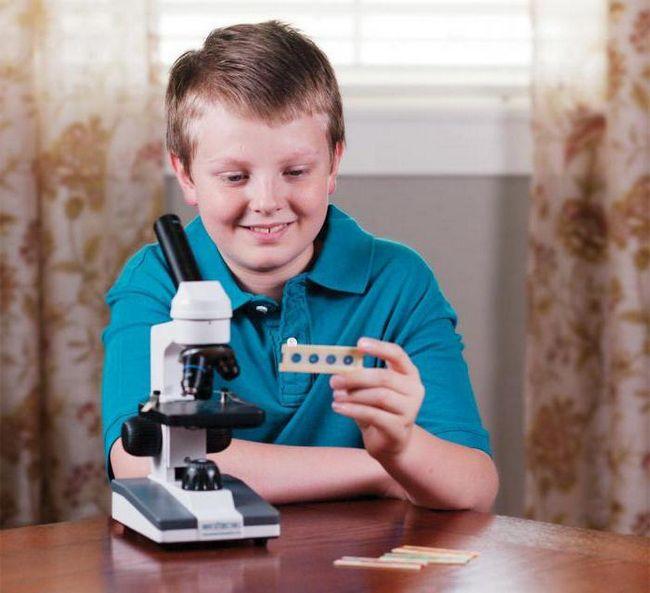 мікроскоп для школяра
